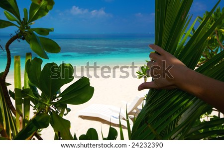 Paradise beach on an ocean island