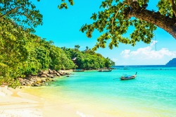 Paradise beach with with golden sand, exotic trees and blue sky, Thailand
