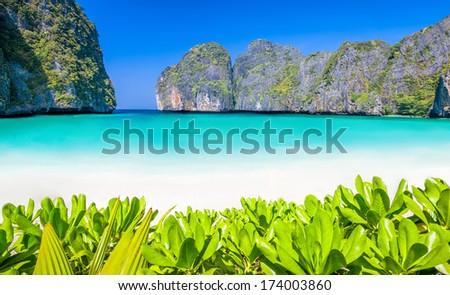 paradise island phi-phi