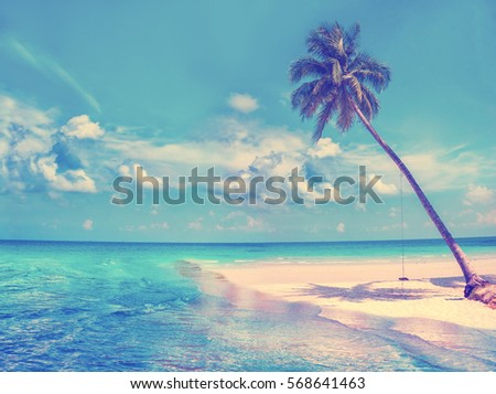 Paradise nature, palm trees on the tropical beach. Summer travel background with retro vintage instagram filter #568641463