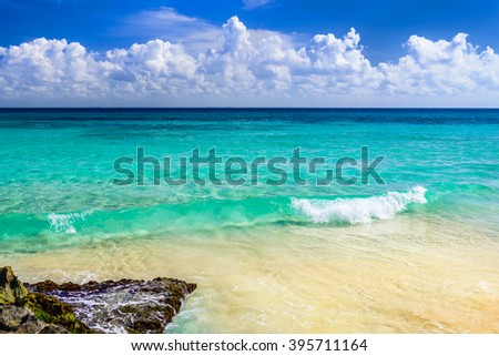 Stock Photo Paradise nature, sand, sea water, rocks, palm tree leaves and summer on the tropical beach.  Playa Del Carmen, Riviera Maya, Mexico.