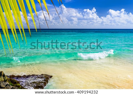 Paradise nature, sand, sea water, rocks, yellow palm tree leaves and summer on the tropical beach.  Photo from Playa Del Carmen, Riviera Maya, Yucatan, Mexico.
