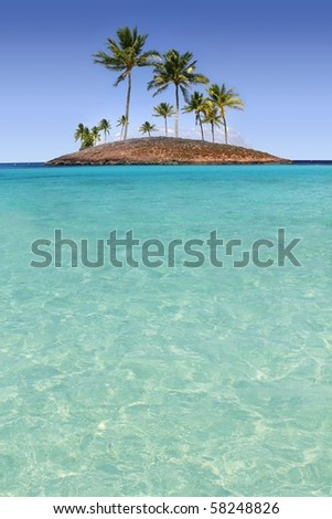 Paradise palm tree island in tropical turquoise beach sea [Photo Illustration]