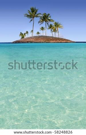 Paradise palm tree island in tropical turquoise beach sea [Photo Illustration]