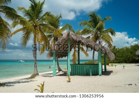 Paradise view in Dominican Republic Saona Island Caribbean beach with palms, house, sand and sea travel pic