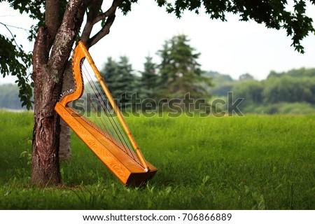 Paraguayan harp #706866889