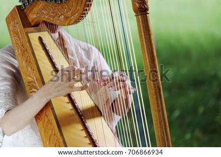 Paraguayan harp #706866934