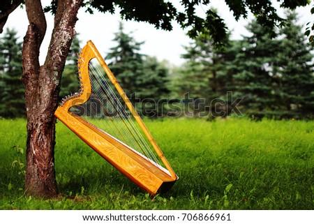 Paraguayan harp #706866961