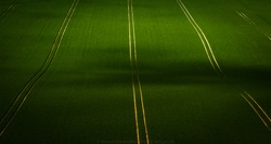 Parallel lines through a crop field