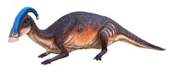 Parasaurolophus is a genus of herbivorous Ornithopod dinosaur that lived in the Late Cretaceous Period, Parasaurolophus isolated on white background with clipping path