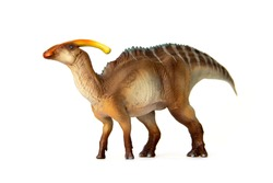 Parasaurolophus Living dinosaur In Late Cretaceous. Dinosaur herbivores have crest on their heads. isolated on white background.