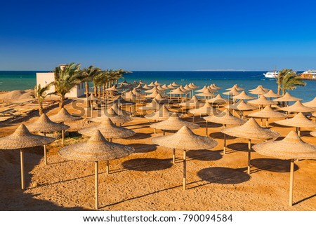 Parasols on the beach of Red Sea in Hurghada, Egypt #790094584