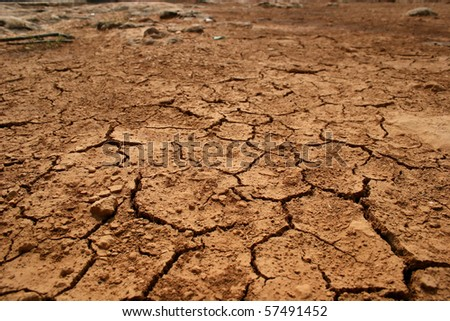 Parched land after a hot summer