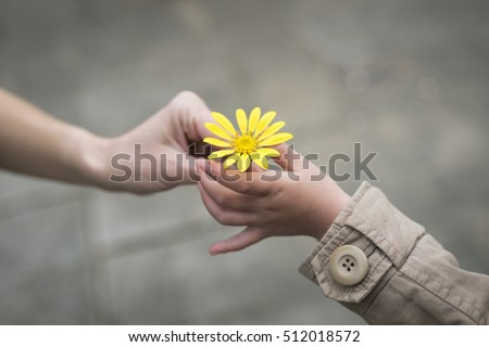 Parent and child hands handing yellow flowers Foto stock ©