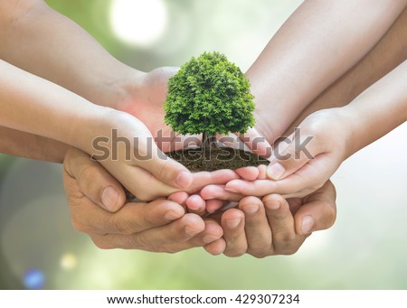 Parent and children planting together big tree care on family hands on blur nature greenery forest background. World environment, Earth day. Eco friendly bio CSR ecosystem reforestation reform concept