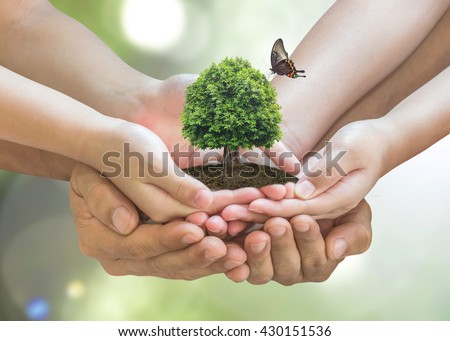 Parent and children planting together big tree on family hands on blur nature greenery background: World environment day reforesting eco bio arbor CSR ESG ecosystems reforestation reform concept