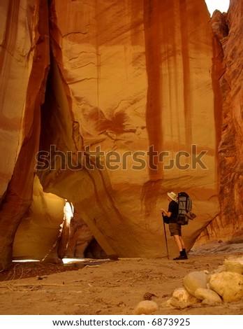 Paria Canyon-Vermilion Cliffs Wilderness, Vermilion Cliffs National Monument, Utah, Arizona USA