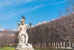 Paris, gardens of Palais Royal, public garden, birds put on a statue, spring