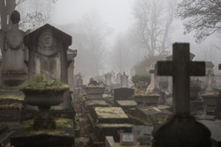 Paris Pere Lachaise cemetry - morning fog
