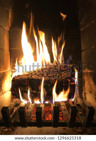 Parisien chimney with alder wood burning