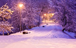 Park alley in winter snow night