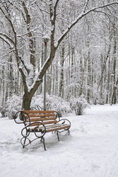 Park bench and trees covered by heavy snow. Lots of snow
