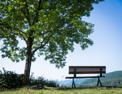 park bench at the european alps