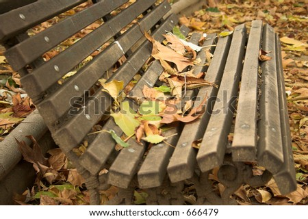 Park bench covered by leafs