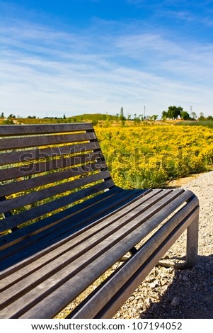 Park bench in spring with yellow flowers on background.