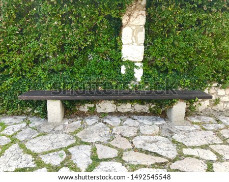 Park bench stone floor and wall leaves foliage tranquil scene #1492545548