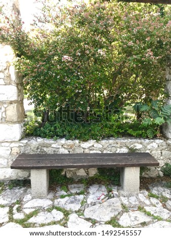 Park bench stone floor and wall leaves foliage tranquil scene #1492545557
