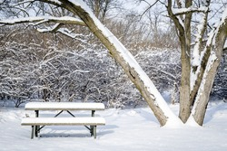Park Bench with Snow in Winter