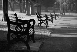 Park benches early morning. Northern Ireland