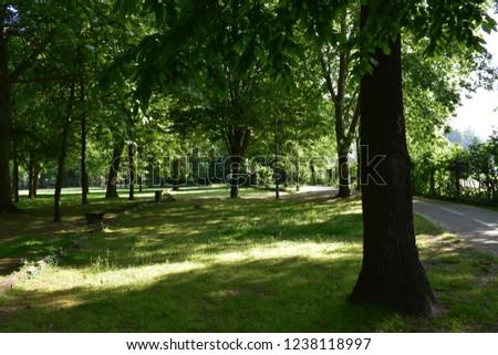 park chelles france Photo stock ©