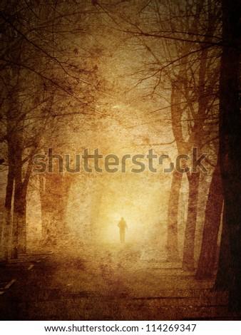 Park in a fog (grunge image). Gothic scene - stock photo