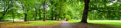 Park in autumn time - panoramic view