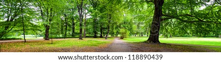 Park in autumn time - panoramic view #118890439
