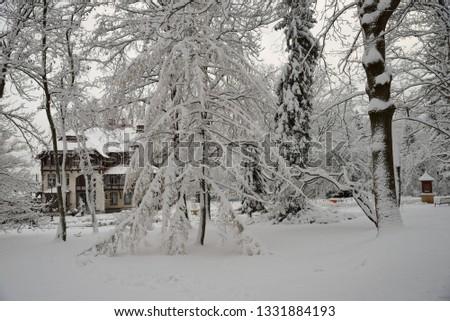 Park in city center in winter,  Swieradow Zdroj resort in winter, northern slope of the Jizera Mountains, Poland #1331884193