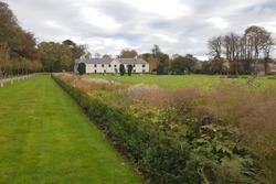 Park in Killarney, Ireland