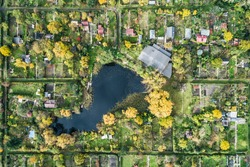 Park in the city with a lake, green trees view from a drone in Sosnowiec, Silesia, Poland