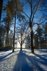 Park In Winter On A Sunny Day With Sunrays, In Spremberg, Bismarck Tower In Background