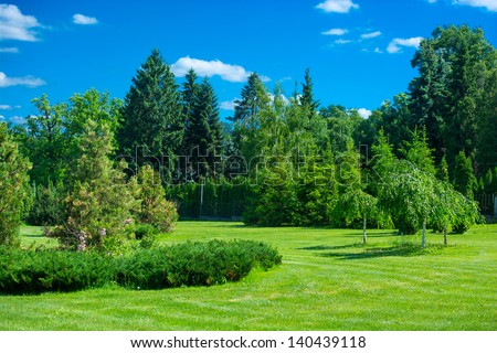 Park landscape with green grass, trees and blue sky