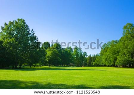 park lawn , blue sky