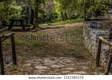park outdoor forest narrow path way of paved and ground small trail  #1311385574