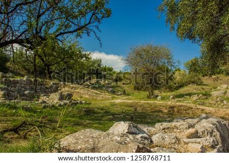 park outdoor nature landscape  #1258768711