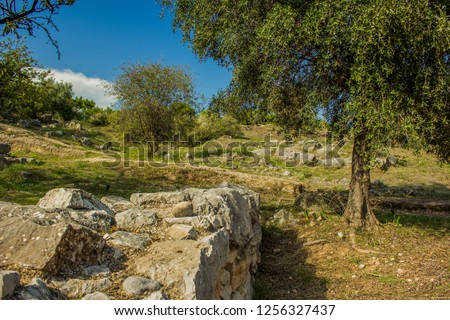 park outdoor outskirts space environment with old destroyed stone wall ruins exterior landscape design and trees in clear bright summer weather time #1256327437