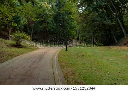 park outdoor scenic environment curved paved walking trail  #1551232844