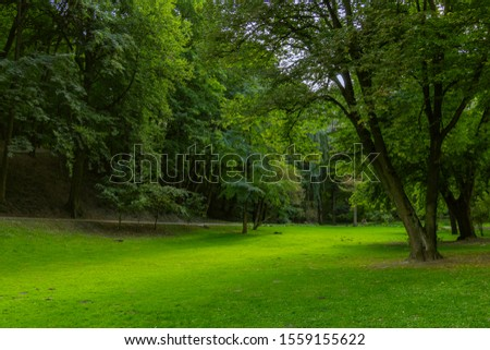park outdoor vivid green foliage and grass meadow space natural view environment spring time  #1559155622