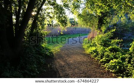 Park Pathway #674864227