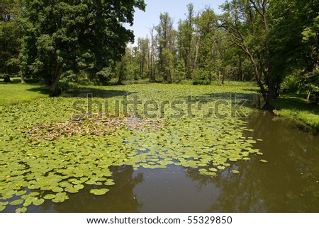 park pond with water lilies at the castle in southern Bohemia Blatná - stock photo